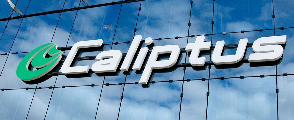 Caliptus
