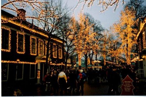Vi har sålt trädbelysning, juldekorationer, ljusslang till Liseberg Göteborg.